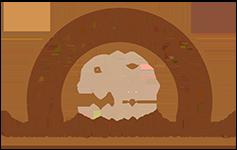 Barn Doors and More logo